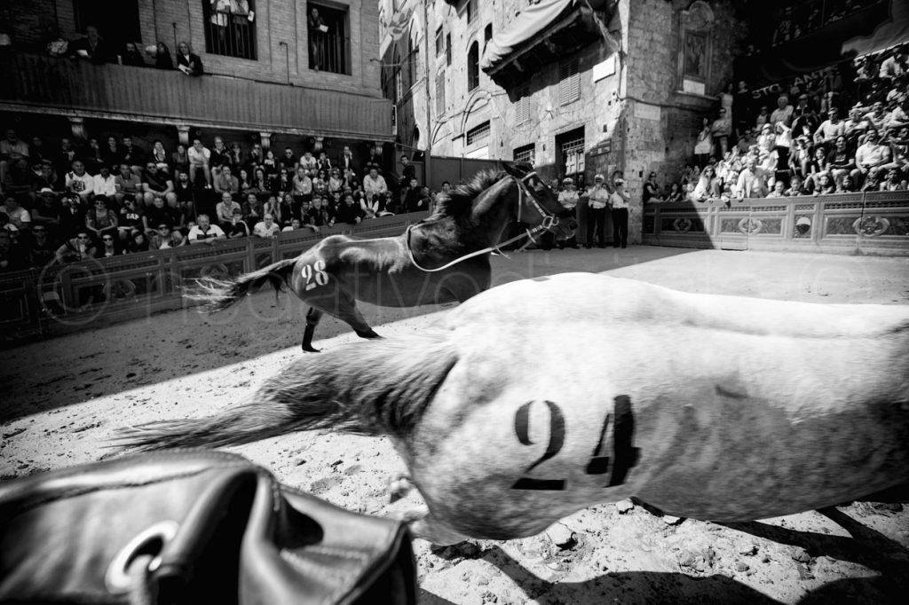 Palio Luglio 2013 - Casato- Osvaldo e Peccatrice